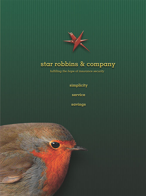 Star Robbins Brochure Cover