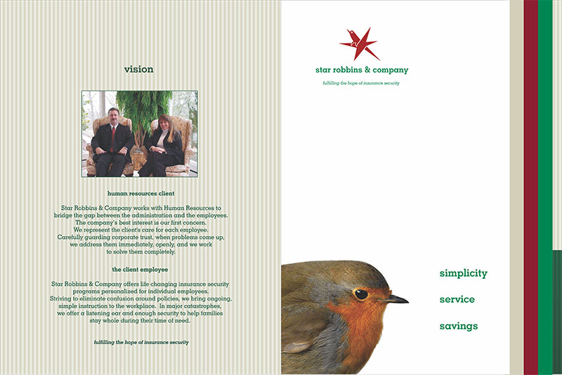Inside Brochure - vision and Content Simplification
