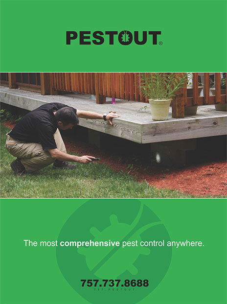 PESTOUT brochure cover - showing comprehensive attention to detail in pest control.